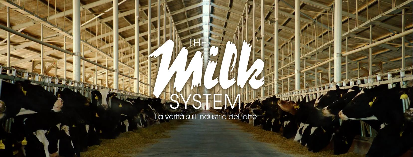 The Milk System - cover facebook